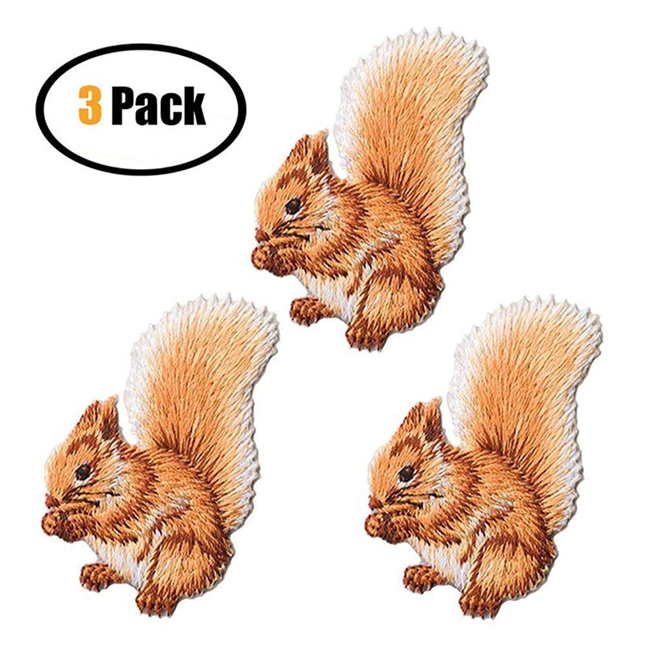 3 Pack Delicate Embroidered Patches, Cute Squirrel Embroidery Patches, Iron On Patches, Sew On Applique Patch, Custom Backpack Patches for Men, Women, Boys, Girls, Kids, Super Cool!