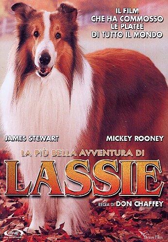 La Piu' Bella Avventura Di Lassie