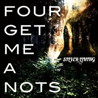 SILVER LINING by Four Get Me A Nots (2011-09-07)