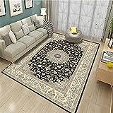 alfombras Salon Grandes Baratas La Alfombra Gris Oscuro, la Tienda fácil Transpirable no se desvanece la Alfombra antiestática Alfombra Gateo Bebe -Gris Oscuro_200x230cm