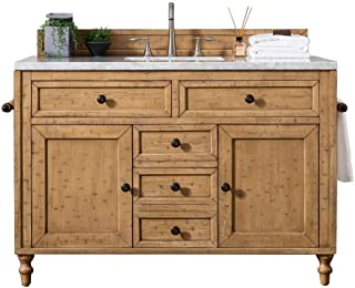 48 in. Single Vanity Cabinet in Copper Cover Finish (Renewed)