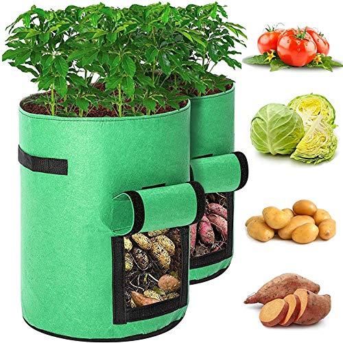 WXHXSRJ Bolsas de Cultivo de Patatas, Paquete de 2 macetas de Tela Resistentes para Plantar, con Asas y Ventana de Velcro, para Plantar Fresas, Tomates y Zanahorias,M