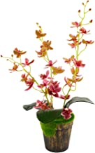U/N Artificial Flower Bonsai with Vase Real Touch Orchid Flower Table Centerpieces..