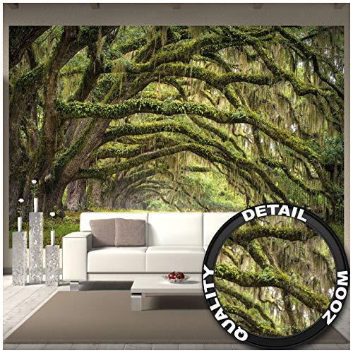 Quercus Bos – muurschildering decoratie bos landschap zomer bos mos mystiek eiken Allee sprookjesbos park takken fotobehang wandbehang fotoposter wanddecoratie