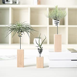 Danmu 3pcs (3 Sizes) Wood Stand Air Plant Holder, Air Plant Display, Airplant Container, Air Plant Frame, Tabletop Planter, Tillandsia Planter