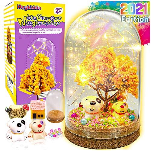 Fairy night light Kit