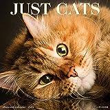 Just Cats 2021 Wall Calendar