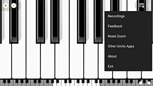 『Mini Piano Pro』の7枚目の画像