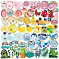Cute Stickers for Water Bottles Hydro Flask, 100 Pack/PCS Waterproof Vinyl Aesthetic Vsco Stickers Laptop Skateboard Luggage Computer Stickers for Kids Teens Girls