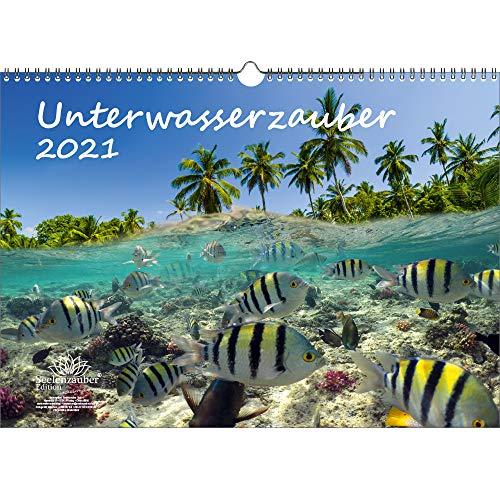Unterwasserzauber DIN A3 Kalender für 2021 Unterwasser - Geschenkset Inhalt: 1x Kalender, 1x Weihnachts- und 1x Grußkarte (insgesamt 3 Teile)
