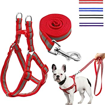 The DDS Store Nylon Reflective Dog Harness Leash Lead Set for Medium Dogs (Medium, Red)