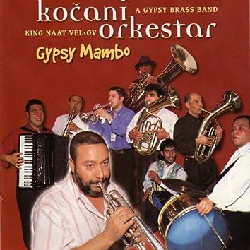 Gypsy mambo