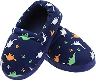 LA PLAGE Dinosaur Slippers for Boys Anti Slip Little Kid Slippers for Kid with Memory Foam
