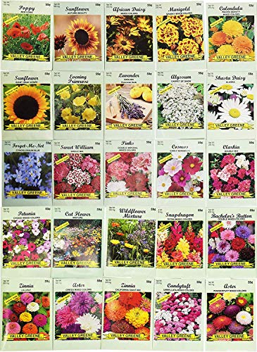 25 flower seed packets