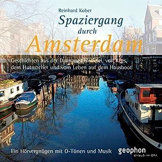 Spaziergang durch Amsterdam Titelbild
