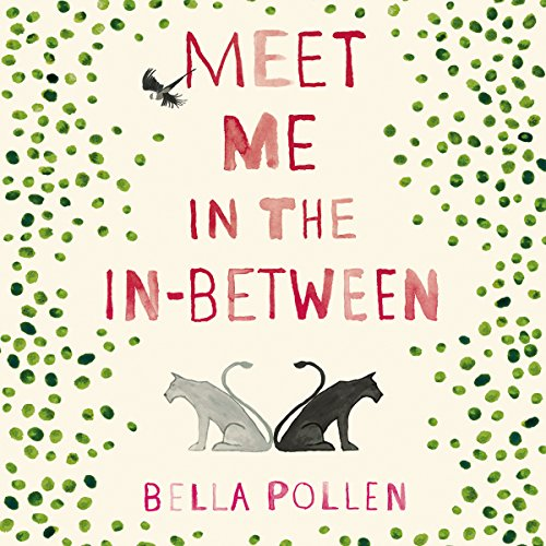 Meet Me in the In-Between audiobook cover art