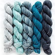Manos Del Uruguay Silk Blend Fino Mini-Skein Set 1 Augusta, 5 x 20g, Merino Silk Hand Dyed Yarn