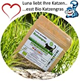 SIS Haustier Sis mascotas bio gato hierba Semillas 1bolsa con 90g mezcla de semillas para aprox. 45ollas fertiges gato hierba