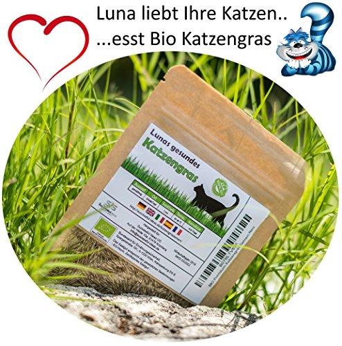 SiS Successfulldeas - SOLUTIONS - Lunas Bio Katzengrassamen - 1 Beutel mit 90g Saatmischung für ca. 45 Töpfe fertiges Katzengras in wiederverschliessbarem Beutel
