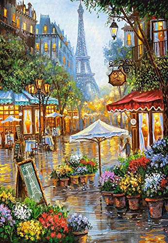 Castorland Jigsaw 1000 pc-Fiori primaverili, Parigi, Multicolore, C-103669