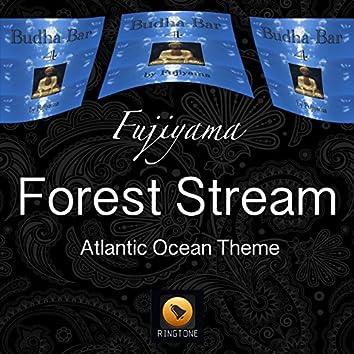 Forest Stream (Atlantic Ocean Theme)