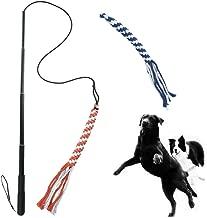chase dog training