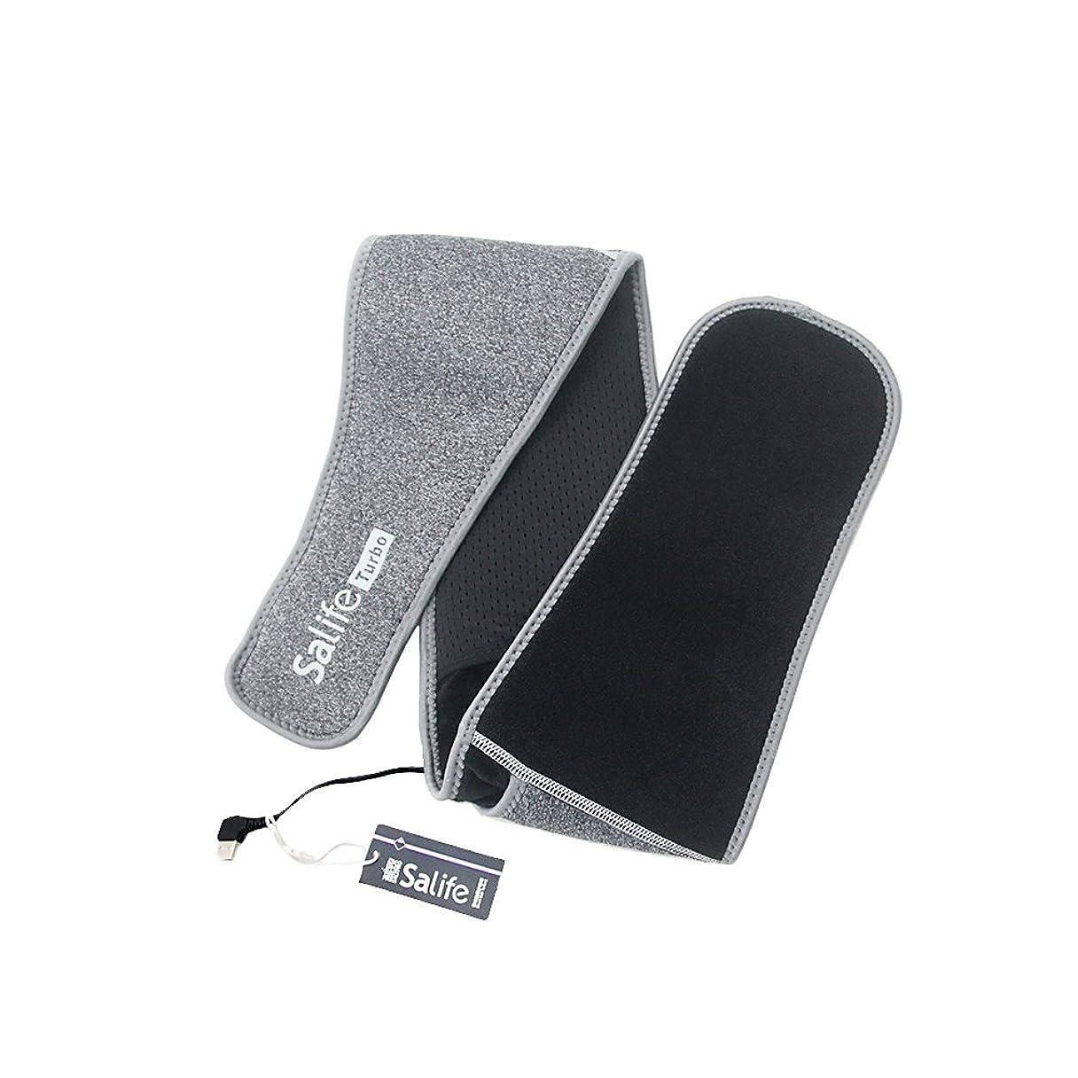 普通のアンビエントおいしいWORBEST SMART BELT 知能灸塩ベルト 三段階温度調節 USB充電式 遠赤外線発熱 冷え性対策 ストレス解消 腰痛 お腹温める ダイエット