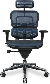 Ergohuman Eurotech Mesh Chair - 18.1A 22.9