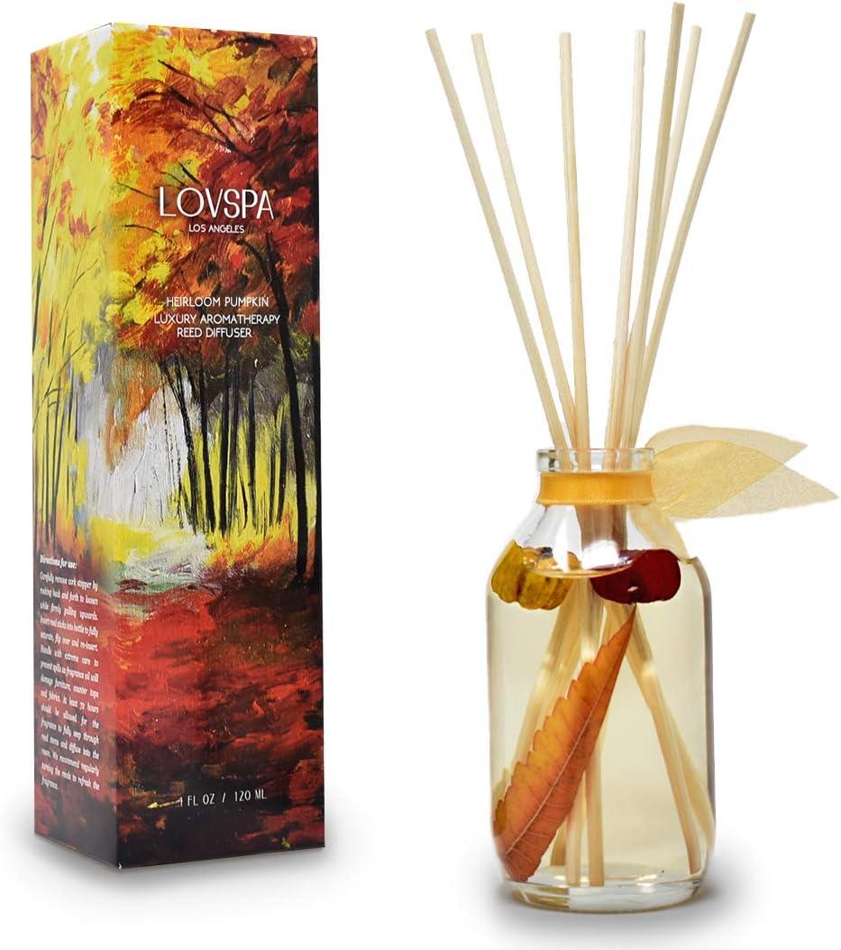 LOVSPA Heirloom Pumpkin Reed Max 48% OFF Diffuser Sticks with Cinnamon Set Lowest price challenge