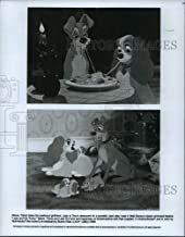 Best pictures of lady from lady and the tramp Reviews