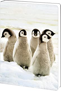 Tree-Free Greetings, Soft Cover Journal Notebook, 160 Lined Pages, 5.5 x 7.5 x 0.75 Inches, Emperor Penguin Chicks (JR89926)