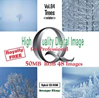 High Quality Digital Image for Professional Trees