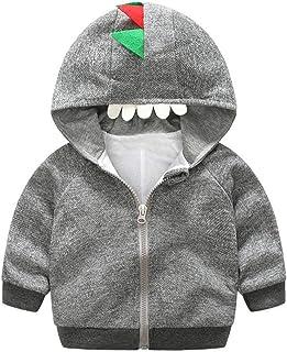 Fairy Baby Boys Girls Cartoon Dinosaur Outfit Hooded Tops Jacket Zip Outwear Infant Coat