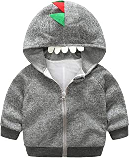 Fairy Baby Boys Girls Cartoon Dinosaur Outfit Hooded Tops Jacket Zip Outwear Infant Coat