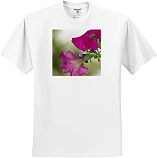 3dRose Jos Fauxtographee Queen Mary Scenery Outside The Queen Mary on California Pretty Flowers and Water T-Shirts