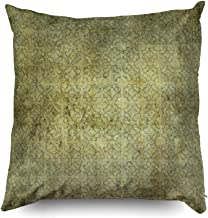 TOMWISH Hidden Zippered Pillowcase Halloween Grungy Moss Green Pattern 20X20Inch,Decorative Throw Custom Cotton Pillow Case Cushion Cover for Home Sofas,bedrooms,Offices,and More