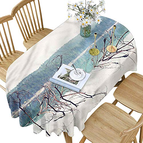 Hiiiman Driftwood Polyester Oval Tablecloth,Fallen Tree in Beach Pattern Printed Washable Table Cloth Cover for Oval Table,60x84 Inch Oval,for Parties Weddings Spring Summer