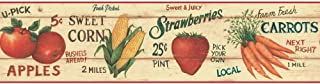 Country Farm Stand Wallpaper Border Fruit Vegetables Red CB089201B