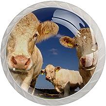 Lade handgrepen trekken ronde kristallen glazen kast knoppen keuken kast handvat,Koeien vee