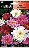 Semillas de Flores - Cosmos Doble Click - Batlle