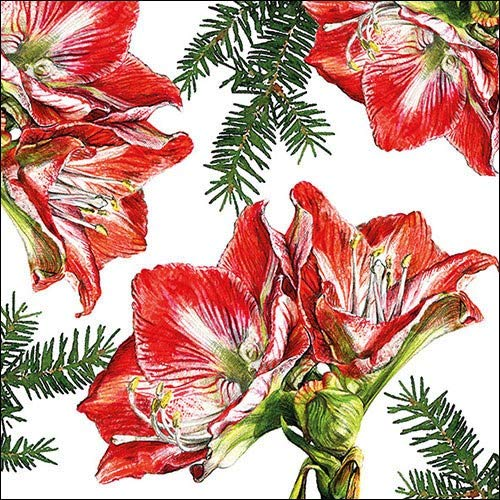 Papier Servietten Lunch/Party/Fest Ca. 33x33cm - Painted Amaryllis - Herbst - Winter - Weihnachten Tisch Deko