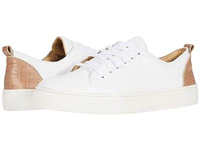 KAANAS Paris Lace-Up Sneaker w/ Contrast Heel (Rose) Women