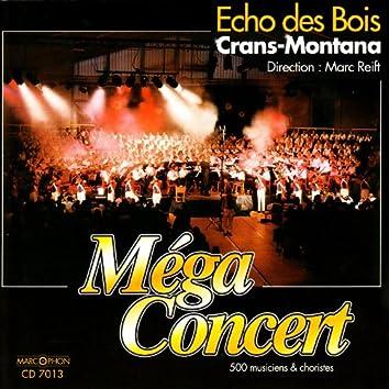 Méga-Concert