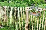 STILTREU Staketenzäune Staketenzaun Kastanie Höhen 50 cm - 200 cm, 5 Meter Rolle, 3 versch. Lattenabstände (Länge x Höhe: 500 x 100 cm, Lattenabstand: 6-8 cm)