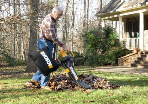 best yard vacuum for acorn