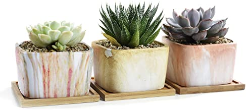SUN-E Square Marbling Ceramic Succulent Pots Cactus Planter Flower Pot Container Bright Color Series With Bamboo Tray&Drai...