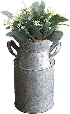 Chytaii Vase décoratif avec Anse Vase Rustique Chic Vintage en métal français Rustique Primitif Vases de Fleurs Décoration de