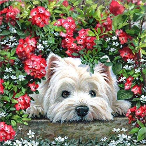Reofrey Diamond Painting 5D kit de pintura de diamantes adulto flor roja perro diamante completo, rhinestone artístico bordado de punto de cruz bordado artesanal decoración (35x35 cm / 14x14 pulgadas)