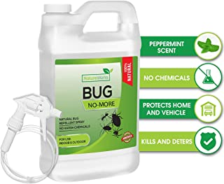 Best bug spray for outside house Reviews