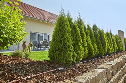 GARDENA Start Set Pflanzreihen M: Micro-Drip-Gartenbewässerungssystem zur schonenden, wassersparenden Bewässerung von Reihenpflanzungen (13011-20) - 3